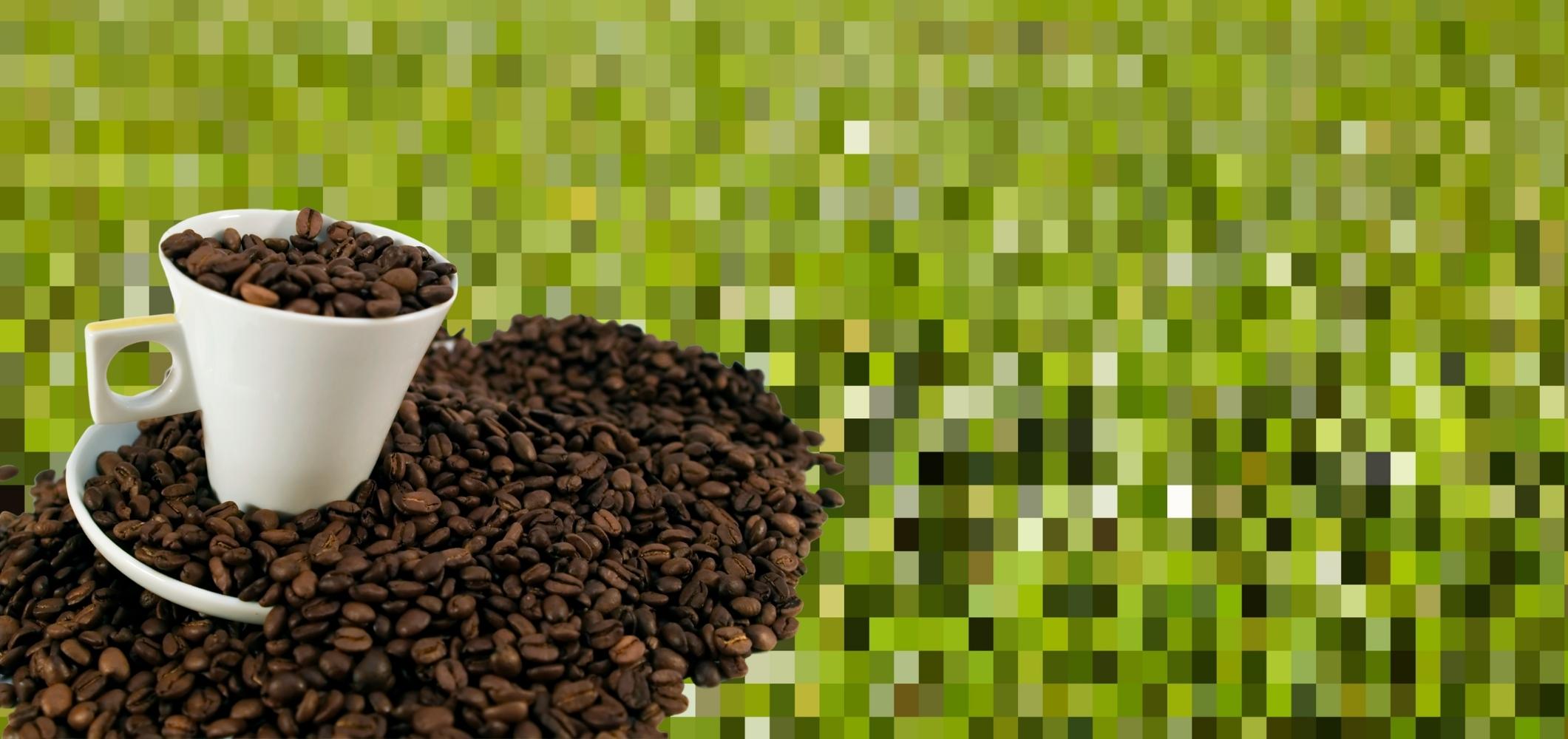 Grüner Kaffee Kapseln: zum Abnehmen?