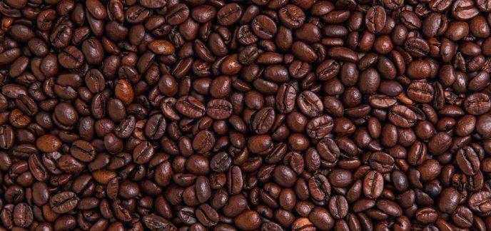 gruner kaffeebohnen