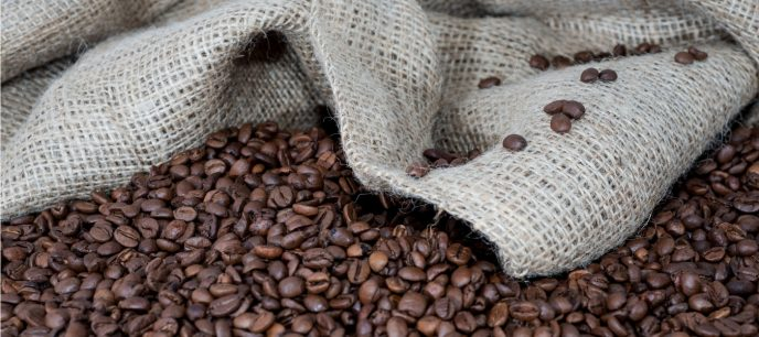 Wie wirkt grüner Kaffee Extrakt?